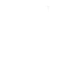 two sigma logo white